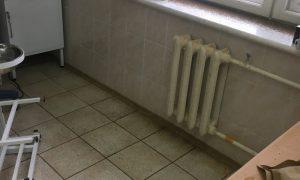 «Насекомые кусают врачей и пациентов». Больница в Смоленской области возглавила антирейтинг ОНФ