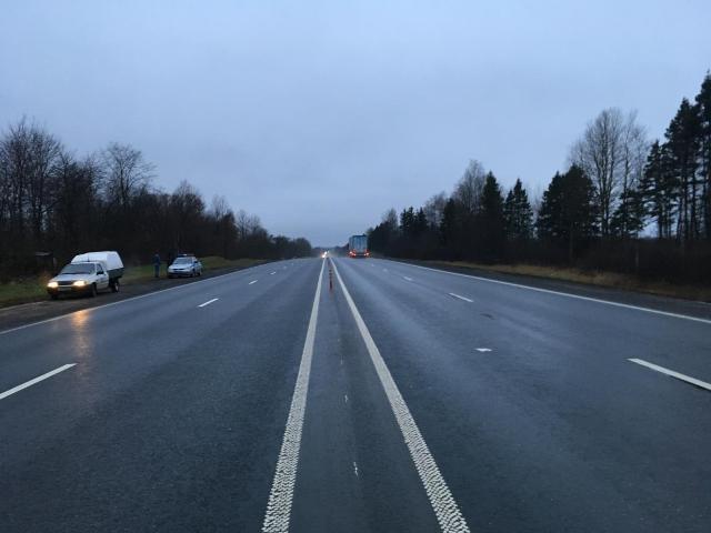Женщина и трехлетний ребенок пострадали в ДТП на трассе М1 в Смоленской области