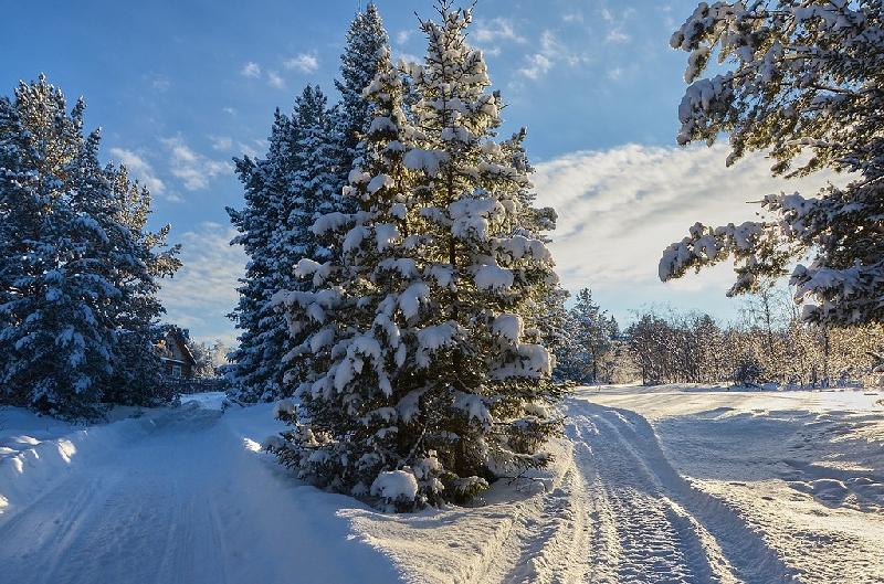 Синоптики рассказали, какая погода ждет смолян в первый день зимы