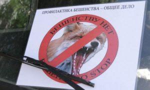 В трех районах Смоленской области выявили очаги бешенства у животных