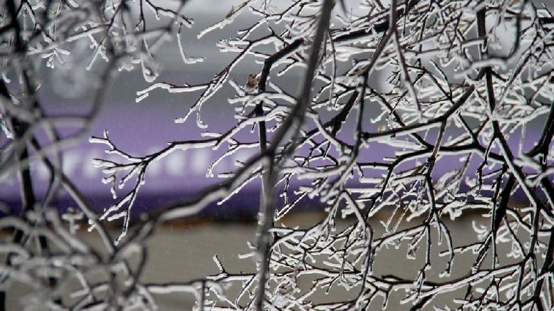 В Смоленской области ожидается ледяной дождь