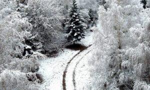 «Снег, дождь и ветер». Какая погода ждет смолян 17 января