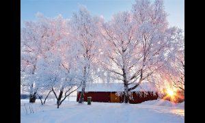 Какая погода ждет смолян 16 января