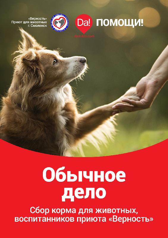 «Обычное дело». В Смоленске собирают помощь для приюта «Верность»