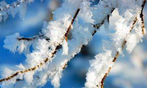 «Снег и гололедица». Какая погода ждет смолян 7 февраля