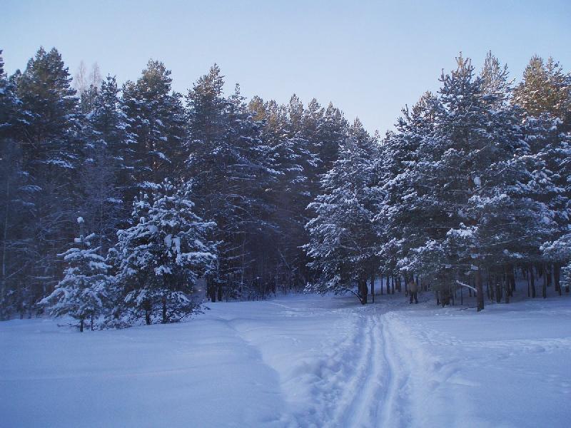 Какая погода ждет смолян 9 февраля