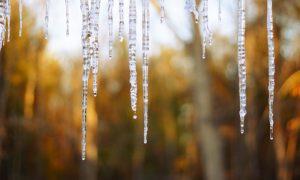 Синоптики рассказали, какая погода ждет смолян 16 февраля
