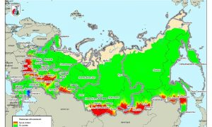 В апреле Смоленщину охватят лесные пожары?