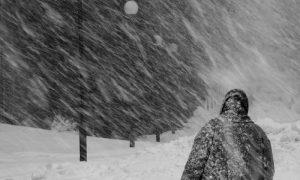 Желтый уровень погодной опасности объявлен в Смоленской области