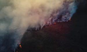Какие районы чаще всего горят в Смоленской области. Видео мощного пожара