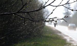Как сильно подпортится погода в Смоленской области 9 апреля