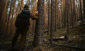 В смоленских лесах ищут 17-летнего парня