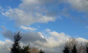 «Завтра ветер переменится». Насколько потеплеет в Смоленской области в среду