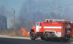 «Сквер чуть не сгорел». Смоляне фотографируют пожары, а не звонят в МЧС?