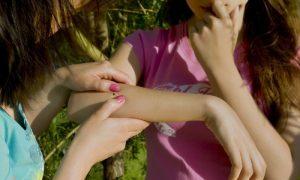 В Смоленской области клещи покусали 124 ребенка
