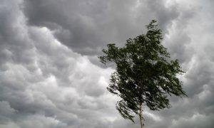 Смолян предупреждают об опасностях погоды