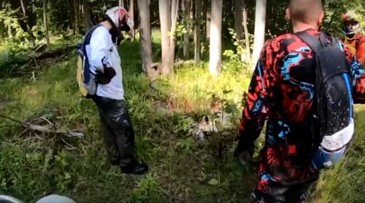 В Смоленской области нашли останки пропавшего год назад пенсионера