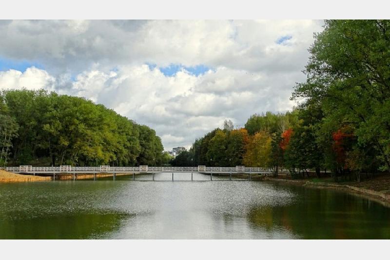 Вода в водоемах смоленских парков опасна для купающихся