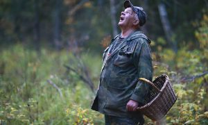 В Смоленской области организуют поиски заблудившегося пенсионера