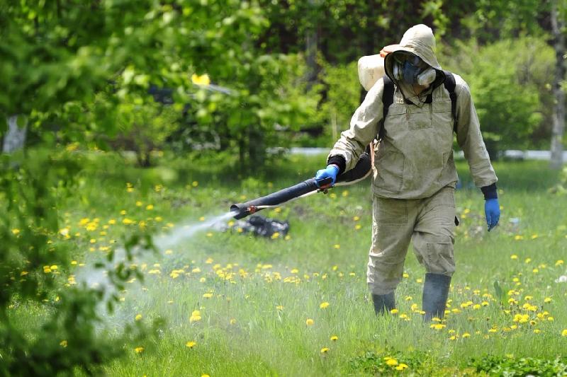 В Реадовском парке Смоленска уничтожат клещей