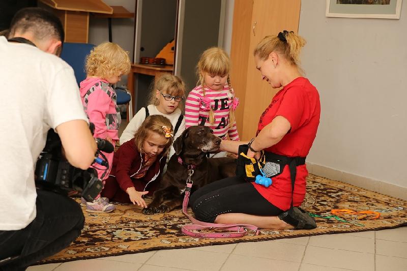 «Лечение любовью». Смоленские собаки-терапевты помогают детям с инвалидностью
