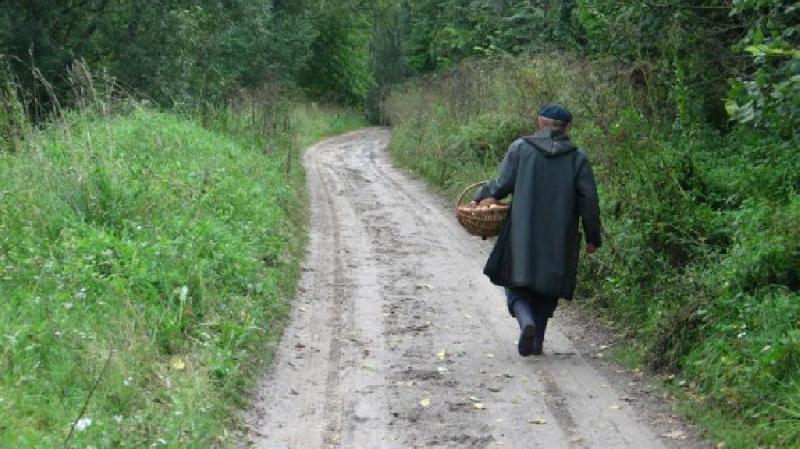 В Смоленской области пропали два пенсионера и пожилая дама