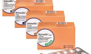 Ветмедин: описание, состав, способ применения и хранение препарата
