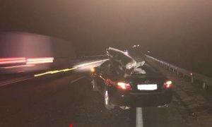 Под Смоленском водитель «Тойоты» пострадал в страшном ДТП с лосем