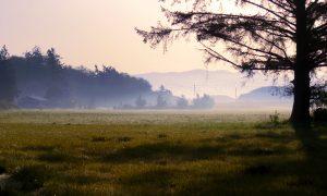 В Смоленской области станет немного теплее