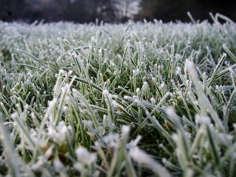 Смоленщину ждут заморозки и штормовое предупреждение