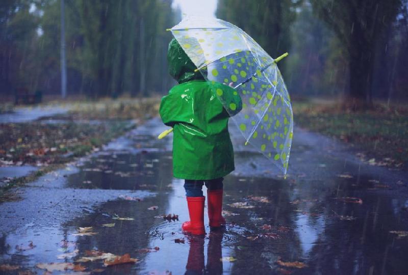 В Смоленской области сохранится дождливая и ветреная погода