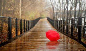 Дожди в Смоленской области не прекратятся