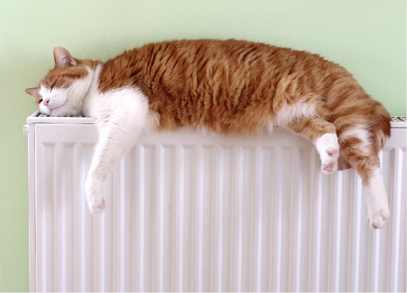 В квартиры 6300 смолян возвращаются тепло и горячая вода