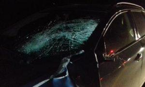 Полицейские установили личность пешехода, погибшего под колесами иномарки