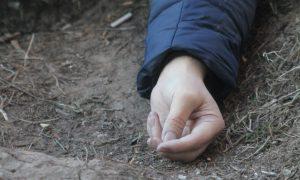В смоленском поле нашли окровавленный труп