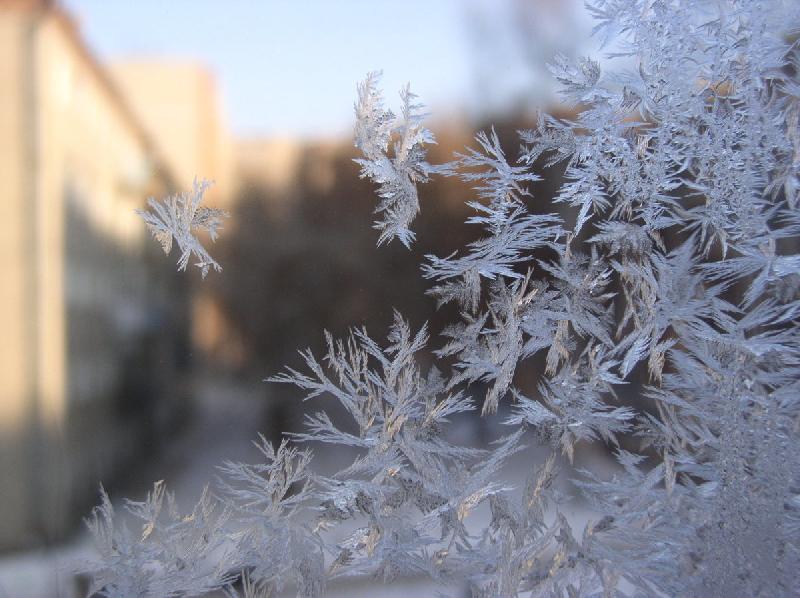 «Зима близко». Синоптики рассказали, когда смолянам ждать похолодание