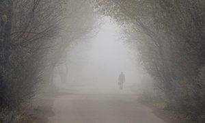 Морось и туман. Погода в Смоленской области продолжит удивлять