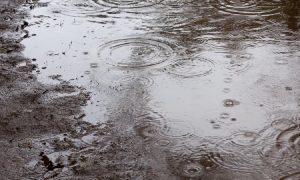 Тепло в Смоленской области постепенно сдает позиции
