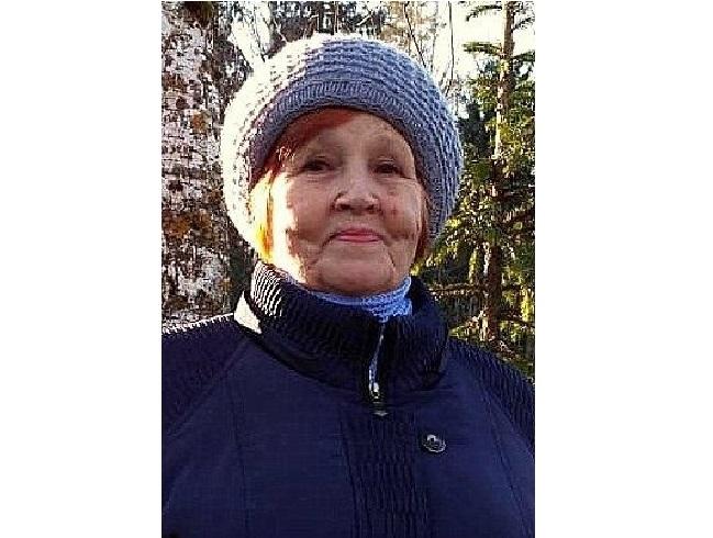 Смоленские поисковики отправляются на поиски пропавшей пенсионерки