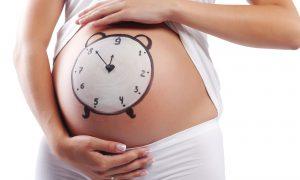Как самостоятельно рассчитать срок беременности