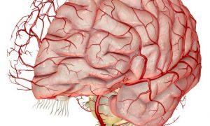Энцефалопатия: как не допустить осложнений?