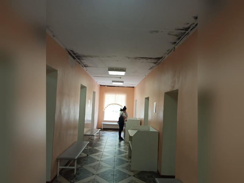 «На потолке — плесень». Смоляне в шоке от состояния детской поликлиники