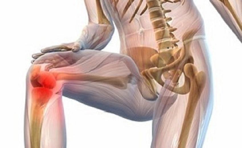 Эффективное средство Hondronex для лечения и профилактики болезней суставов