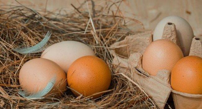 Куриные яйца повышают риск развития диабета – исследование