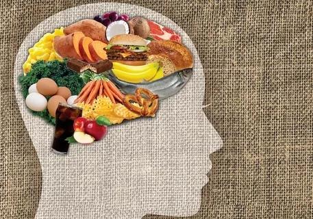 Пища для ума: 5 лучших суперпродуктов, повышающих когнитивные способности