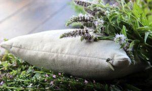 Травяная подушка: сила трав для хорошего сна