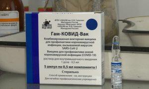 Первым компонентом привились более 54 тысяч смолян. В регион поступила новая партия вакцины «Спутник V»