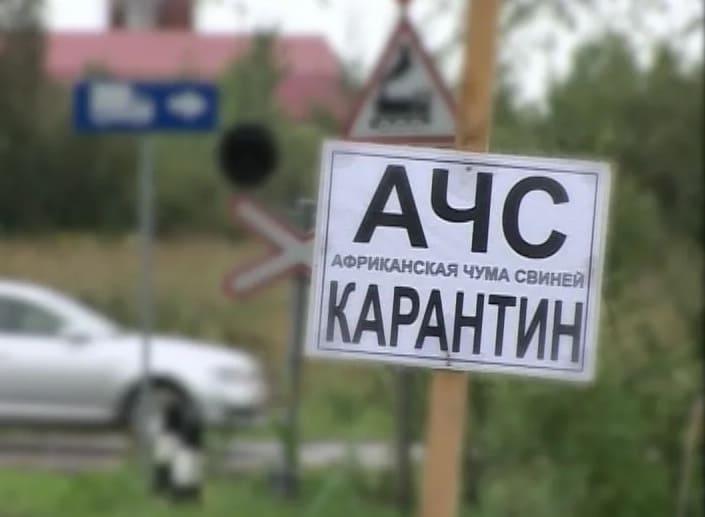 В Смоленской области обнаружили очаг АЧС